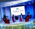 Скрипка на свадьбу, квартет, трио, музыка
